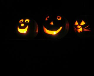 Tips To Keep Pets Safe Over Halloween - Carved Pumpkins