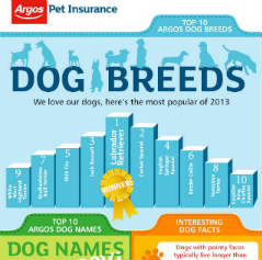 Top Dog Breeds & Names in 2013 Infographic