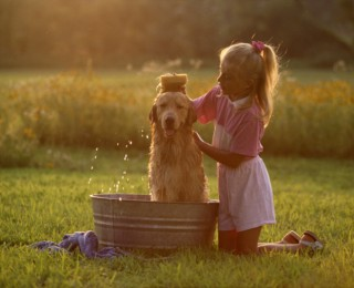 Introducing Pets To Young Children - child washing dog