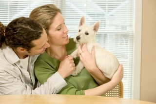 Do We Spend Too Much Time With Dogs? A couple and their dog