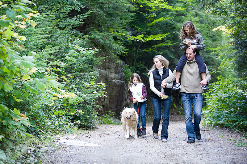 Dog Friendly Attractions In Gloucestershire