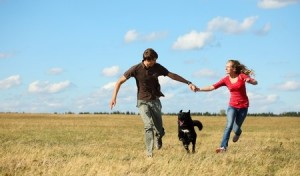 Dog holidays are great for you and your pet