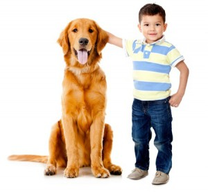 Toddler boy with dog