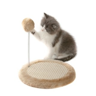 How To Stop Cats Scratching Furniture Argos Pet Insurance