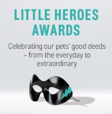Little Hero Awards