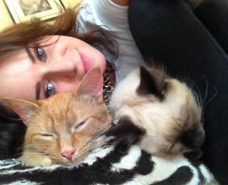 Celebrate International Cat Day and take a #mycatselfie