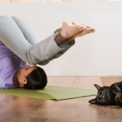 A beginners' guide to cat yoga