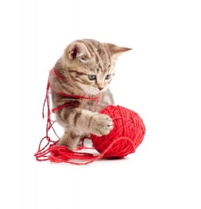 A cute kitten plays with a ball of wool