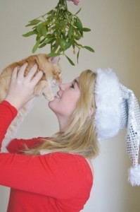 Cats and mistletoe do not mix well