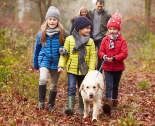 How Much Does it Cost to Own a Dog - A family walk is a great way to exercise with your dog