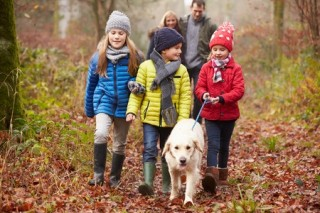 A family walk is a great way to exercise with your dog