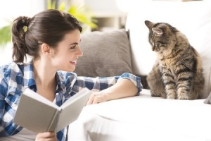 Indoor cats can be happy and healthy if you take time to care for them well