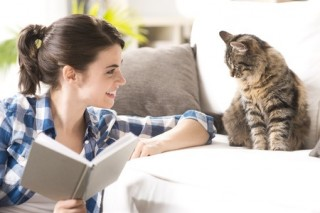 A girl tries keeping her indoor cat happy by spending some time with it at home