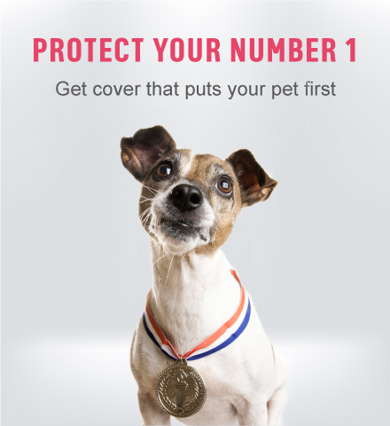ad-protect-your-number-1
