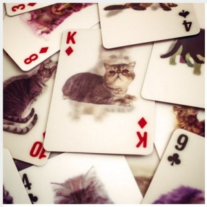 Cat Playing Cards by Firebox