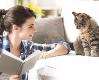 Keeping indoor cats happy can be as easy as reading them a book