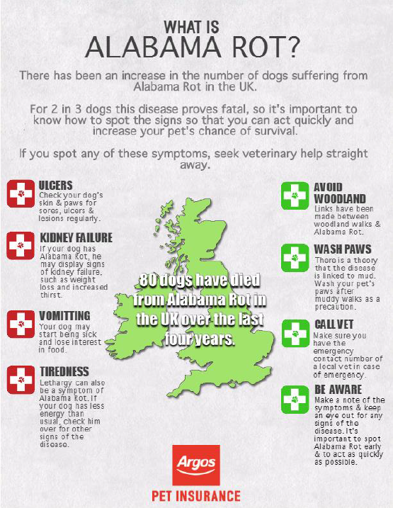 fatal dog disease alabama rot   argos pet insurance