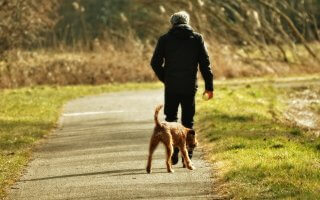 man walking dog for national walking month