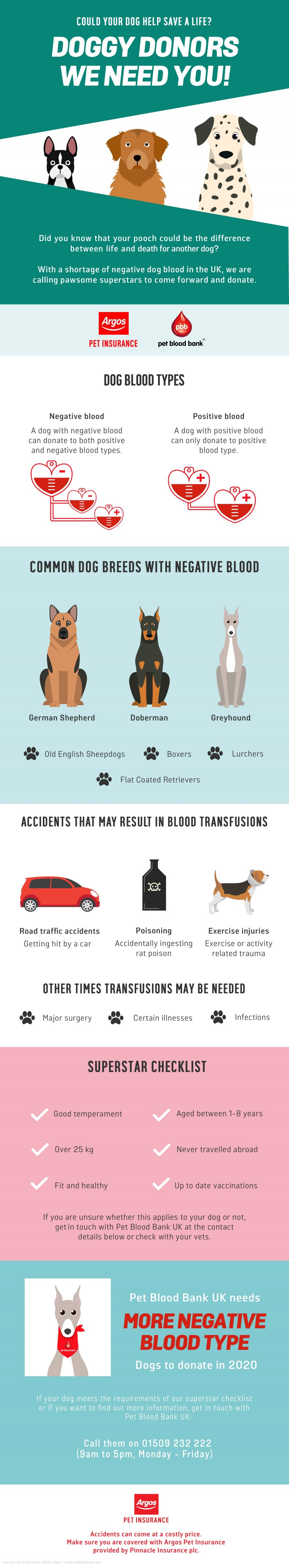 dog blood donation information, infographic and requirements